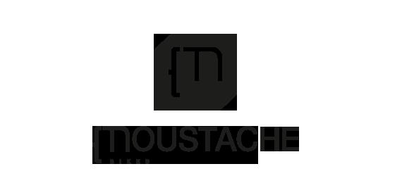 Moustache Ebike